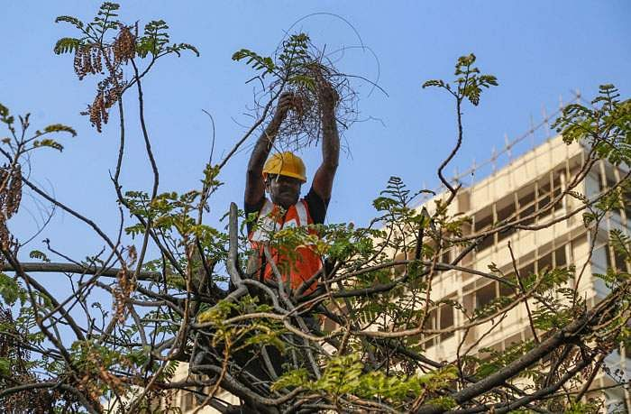 பேசும் படங்கள்: செய்திகள் - படங்களில் PTI1_31_2020_000186B