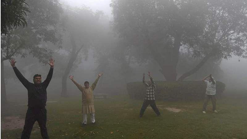 fog-11