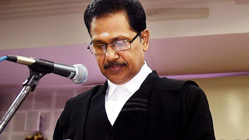 judge-7