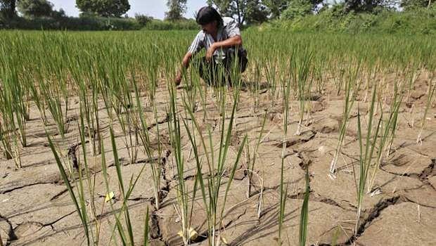 farmer-farm-loan
