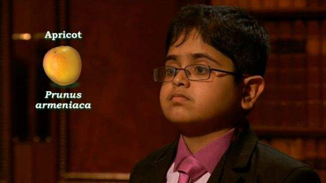 raghul_child_genius
