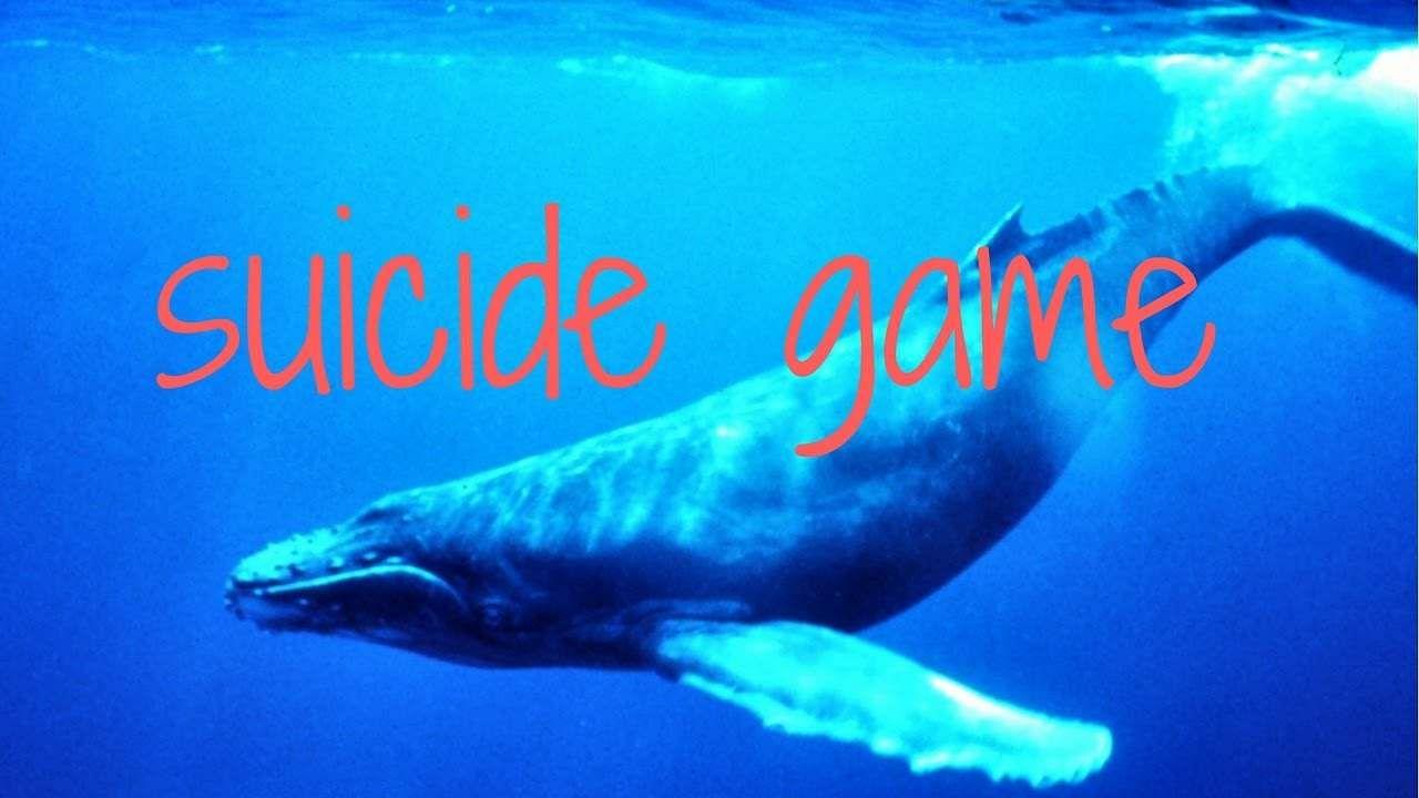 blue_whale_game