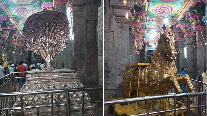 Madurai-Golu-20