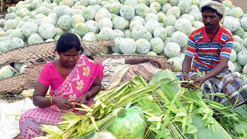 Ayudha-Pooja-4