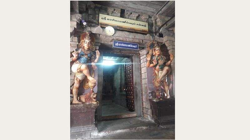 Shri_Gomuktheeswarar_Temple-12