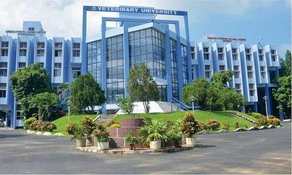 vet_university