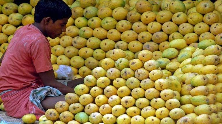 mangoe1