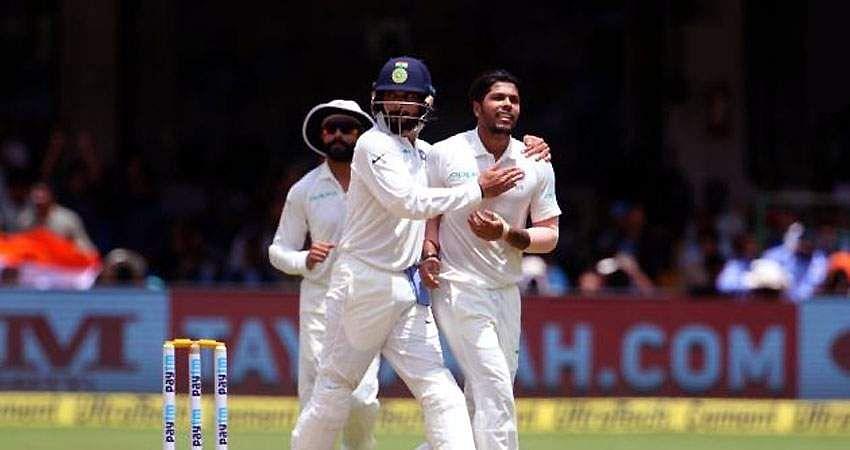 cricket-23