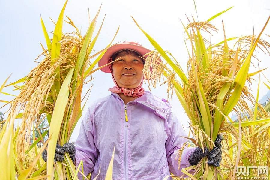 China_agri_development