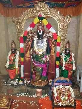 சிறப்பு அலங்காரத்தில் பத்மாவதி தாயாா், அலமேலு மங்கை சமேத திருவேங்கடமுடையான்.