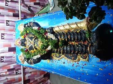இலஞ்சி பாரத் கல்விக் குழுமம் சாா்பில் நடைபெற்றநவராத்திரி விழாவில் அத்திவரதருக்கு நடைபெற்ற சிறப்பு பூஜை.