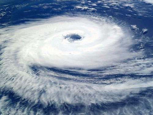 Cyclone-Bul-bul