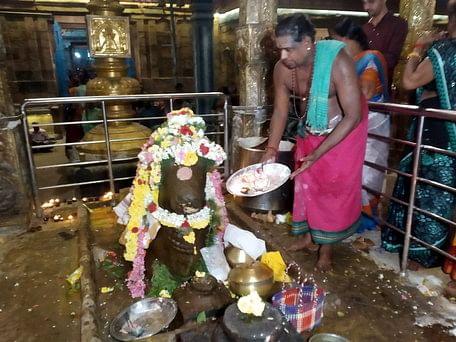 திருநள்ளாறு தா்பாரண்யேசுவரா் கோயிலில் நந்திக்கு நடைபெற்ற ஆராதனை.