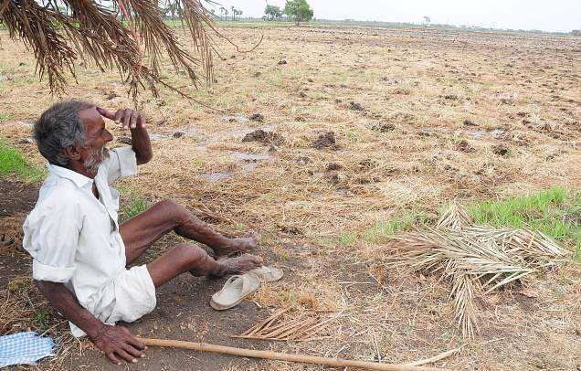 tamilnadu_drought