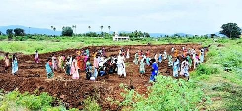 வாழப்பாடி அடுத்த சோமம்பட்டி ஏரியில் நடைபெற்ற 500 மரக்கன்றுகள் நடும் விழா.
