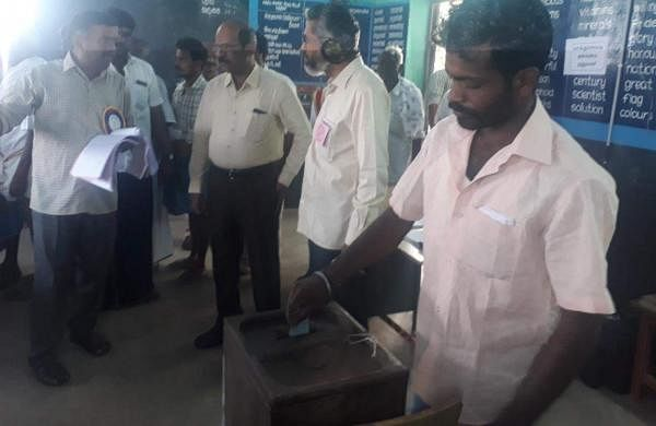 local_body_elections_voting