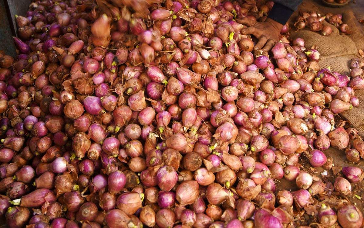 onion-4