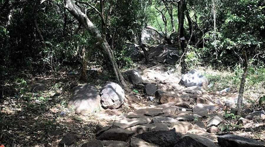 paravathamalai-Siva-Temple-24