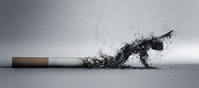 herbal-cigarettes