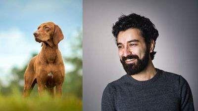beared_men_vs_dog