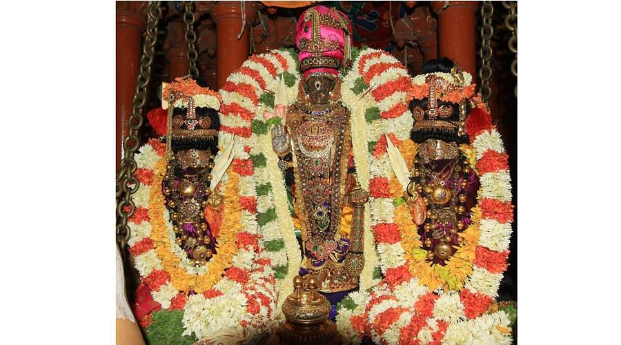 sri-parthasarathytemple-ther-7