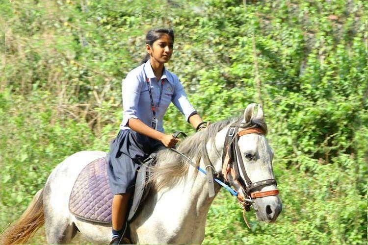 krishna_horse_girl