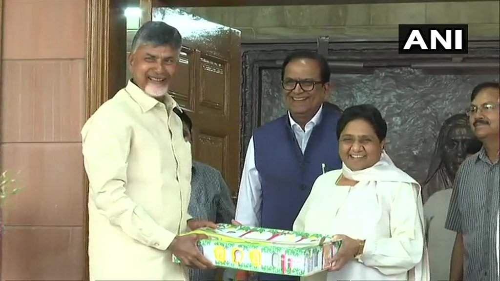 Chandrababu Naidu Mayawati