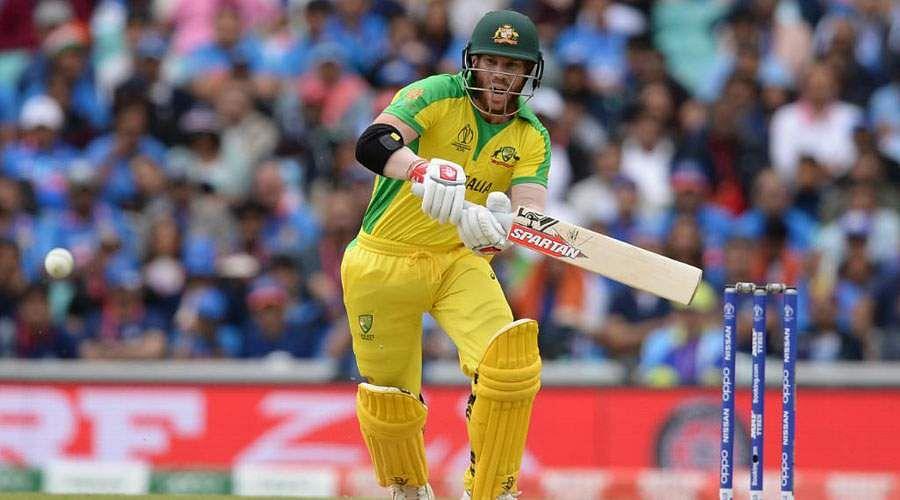 cricket-37