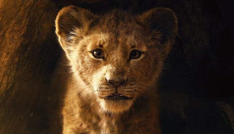 lionking1xx