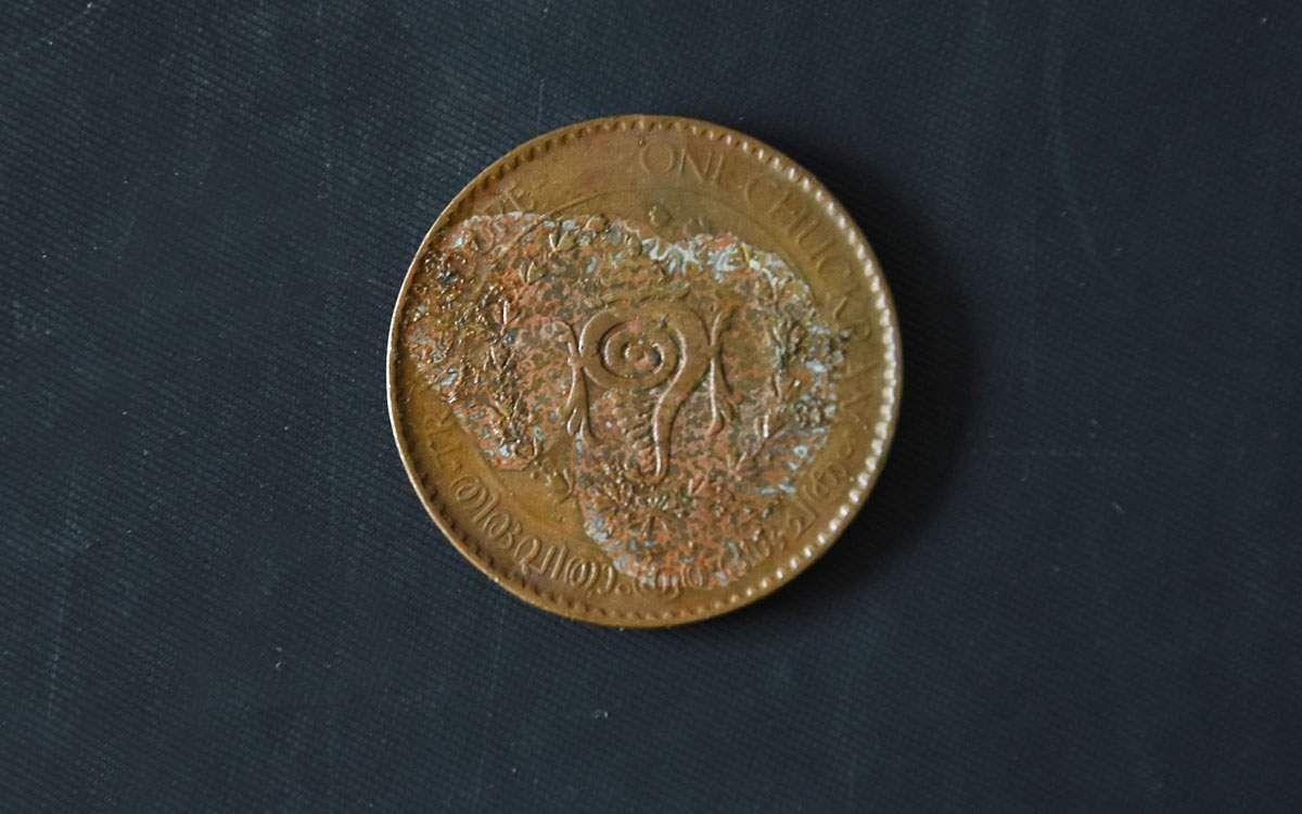 coins-24