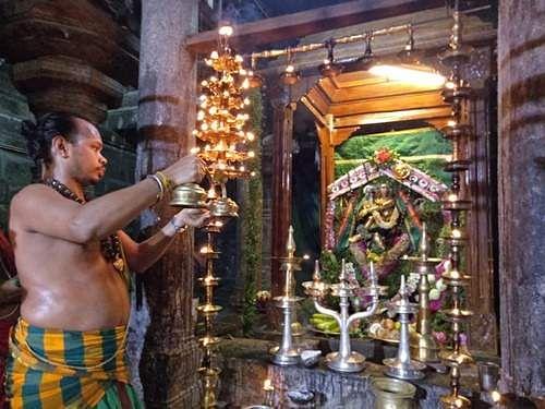 நடராஜருக்கு நடைபெற்ற பச்சை சாத்திதாண்டவ தீபாராதனை