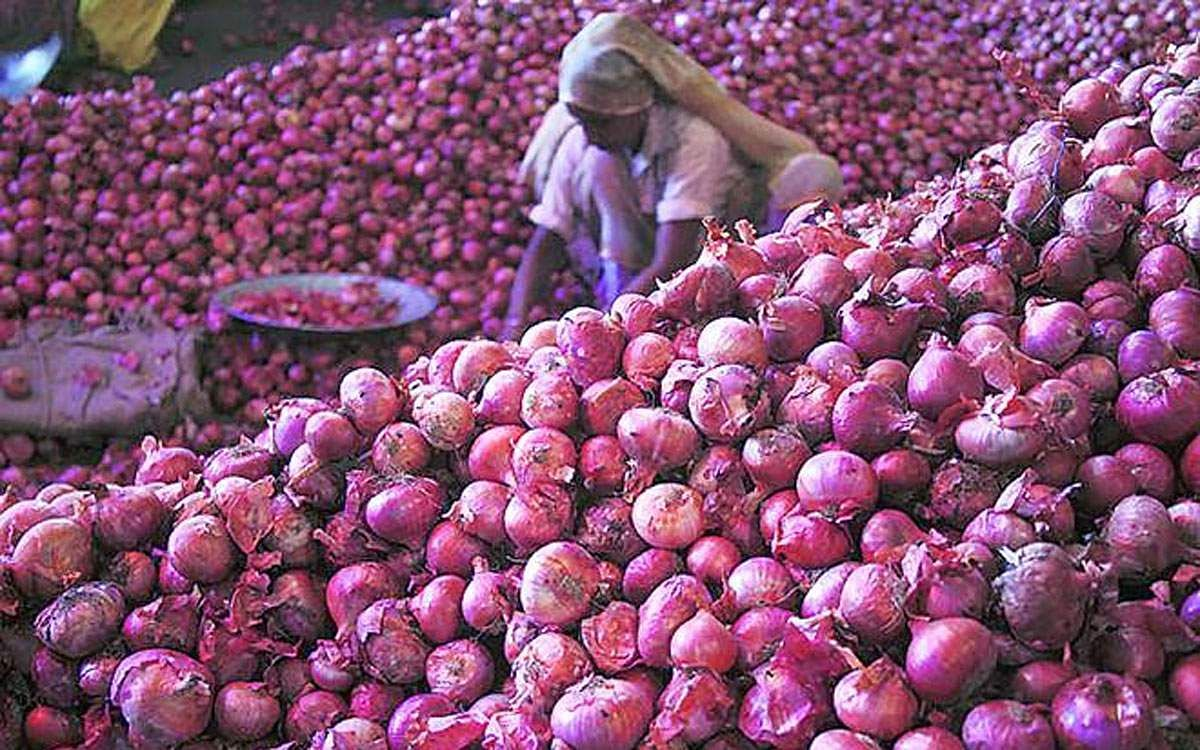 Export restrictions on all varieties of onions will be removed from January 1, 2021