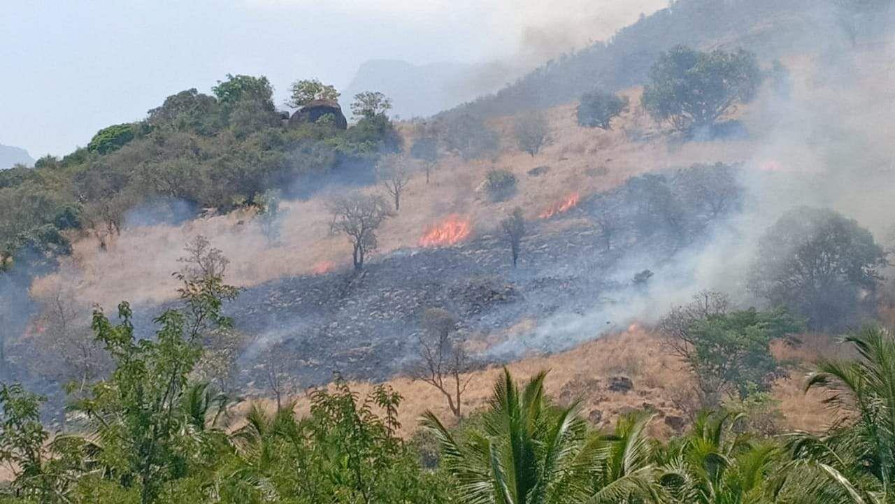 Bodinayakanur_wildfire_1