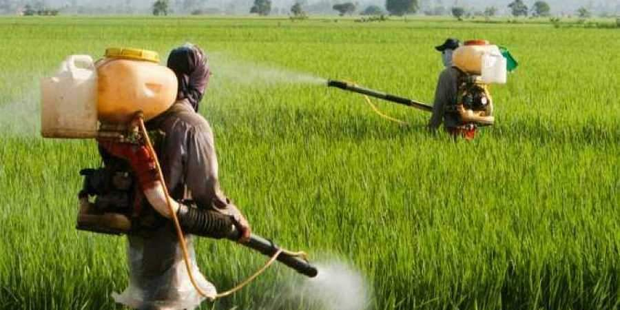 request to open pesticide shops