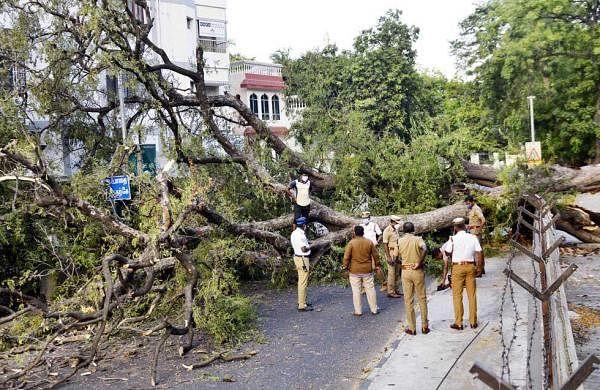 Chennai_-_Day13-19