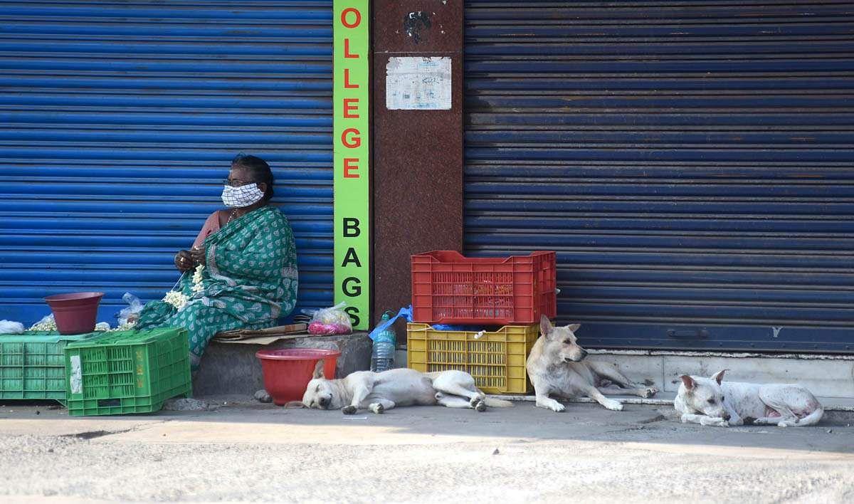 Chennai_Cuefew_Day_15-13