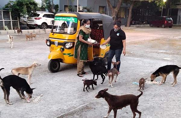 Volunteers who feed animals in chennai