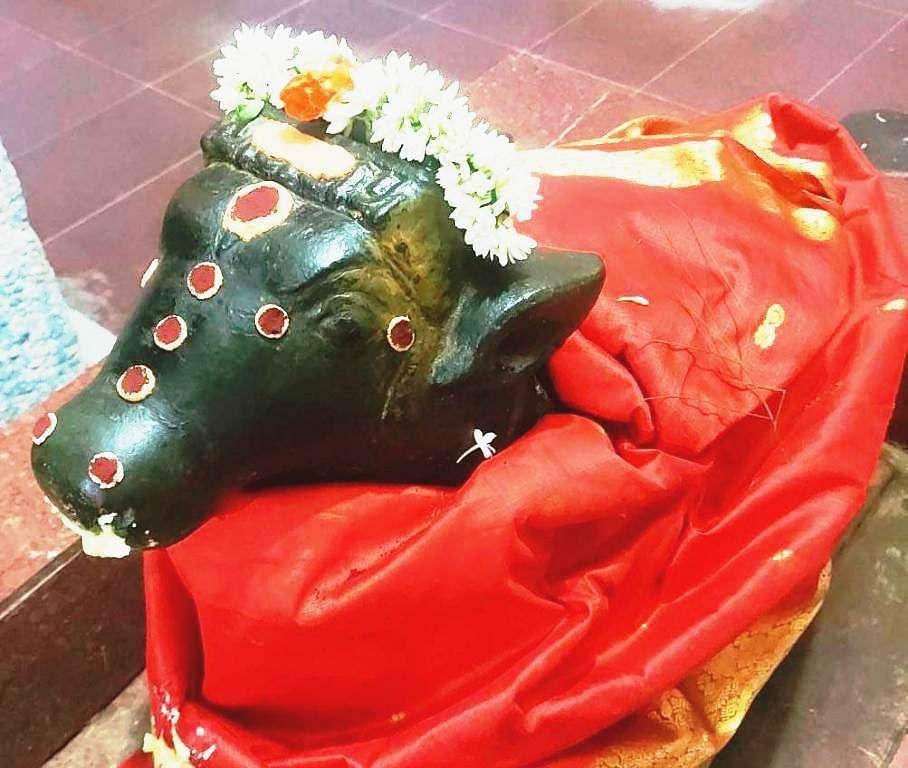 நந்தி பகவானுக்கு செய்யப்பட்டிருந்த சிறப்பு அலங்காரம்.