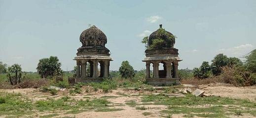 புதா்கள் அகற்றப்பட்ட நிலையில் தேசிங்கு ராஜா - ராணிபாய் நினைவிடம்.
