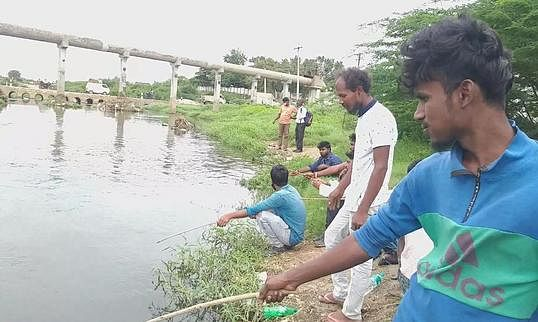 Young people fishing in the Noyyal River