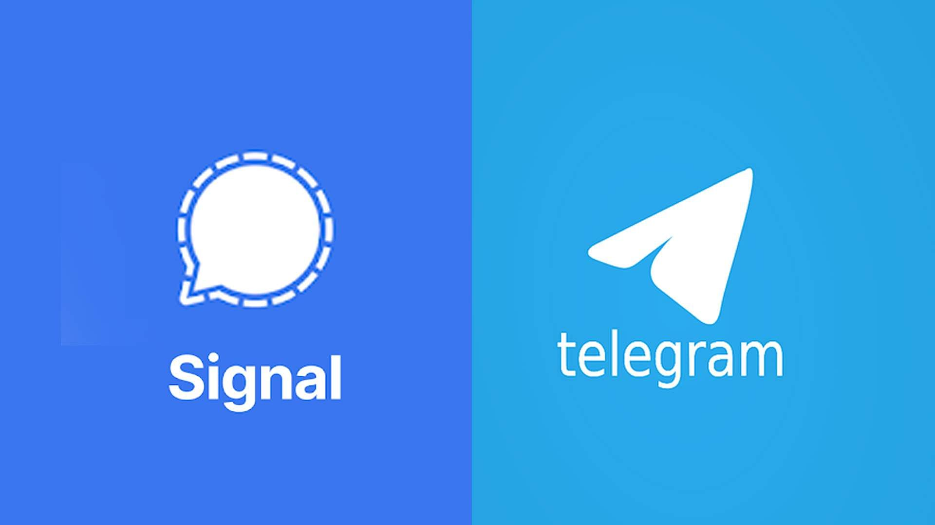 signal-telegram-received-40-lakh-new-users