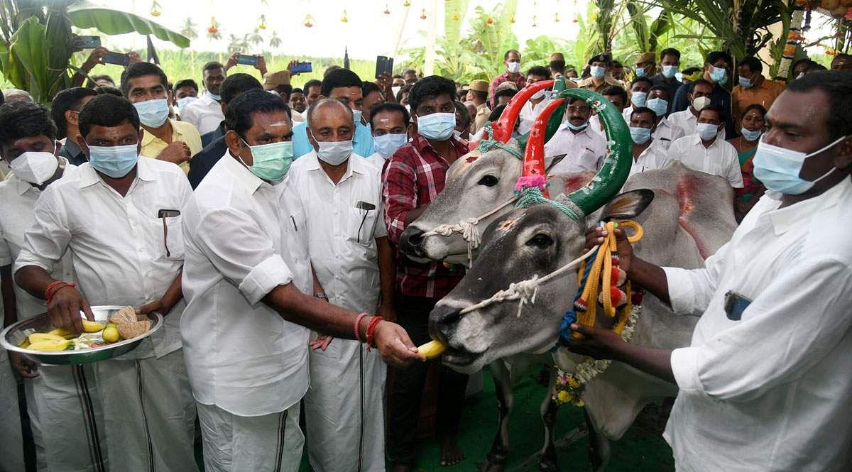 TN-CM-Pongal-Celebration-2
