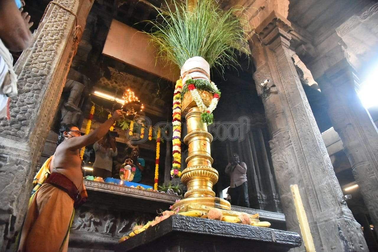 Panguni Uttara Festival flag hoisting at Nellaiyappar Temple