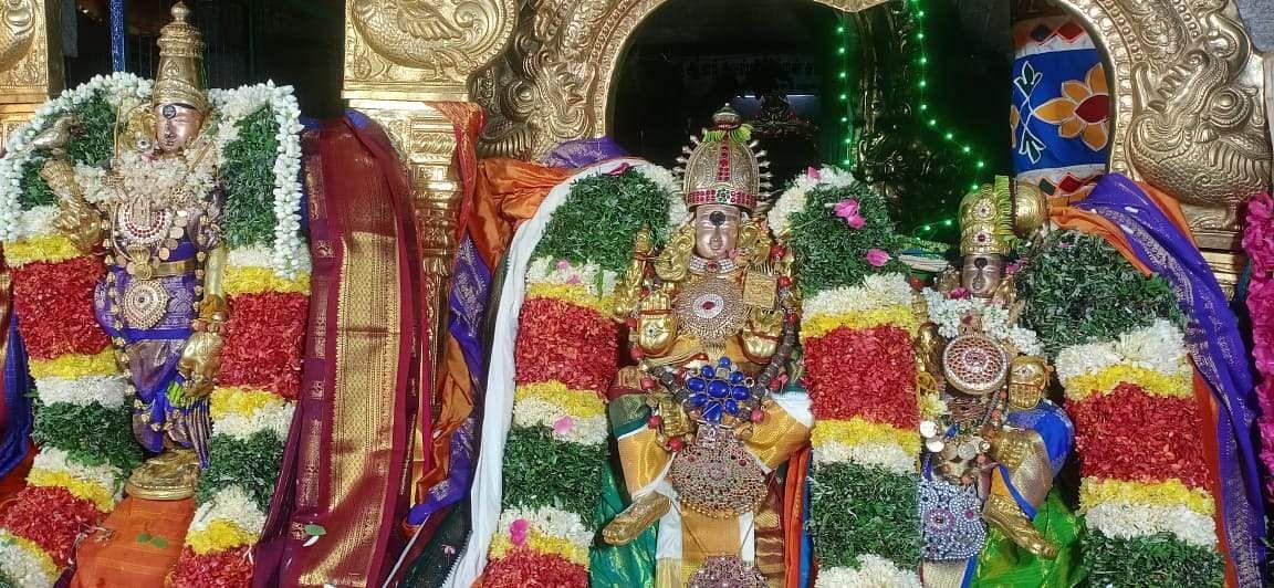 Manamadurai: Anandavalli, Somnathar Swami Tirukkalyana celebration