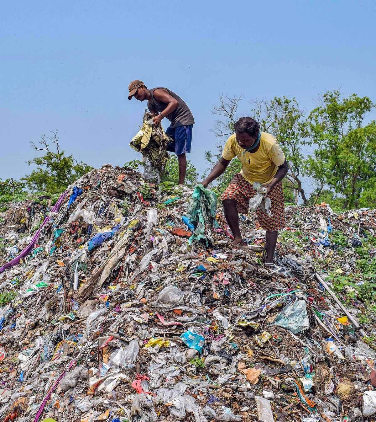 World-pollution-day-14