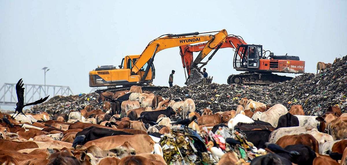 World-pollution-day-8