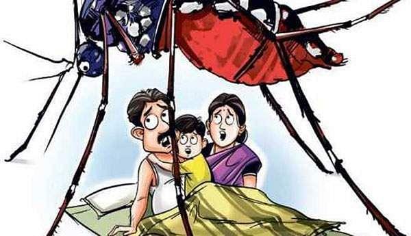 Threatening dengue fever: 11 injured in Chennai